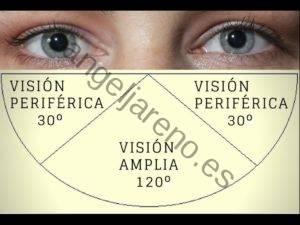 Imagen que recoge uno de los principios básicos defensivos: la visión