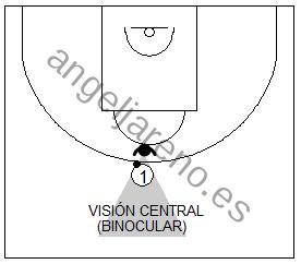 Gráfico de baloncesto que recoge a un defensor usando su visión central para frenar a su atacante con balón delante de él