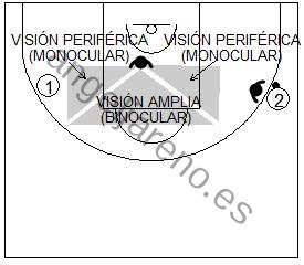 Gráfico de baloncesto que recoge a un defensor en el lado de ayuda usando su visión perimetral para controlar a su atacante y el balón